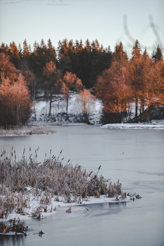 181226 winter-2.jpg