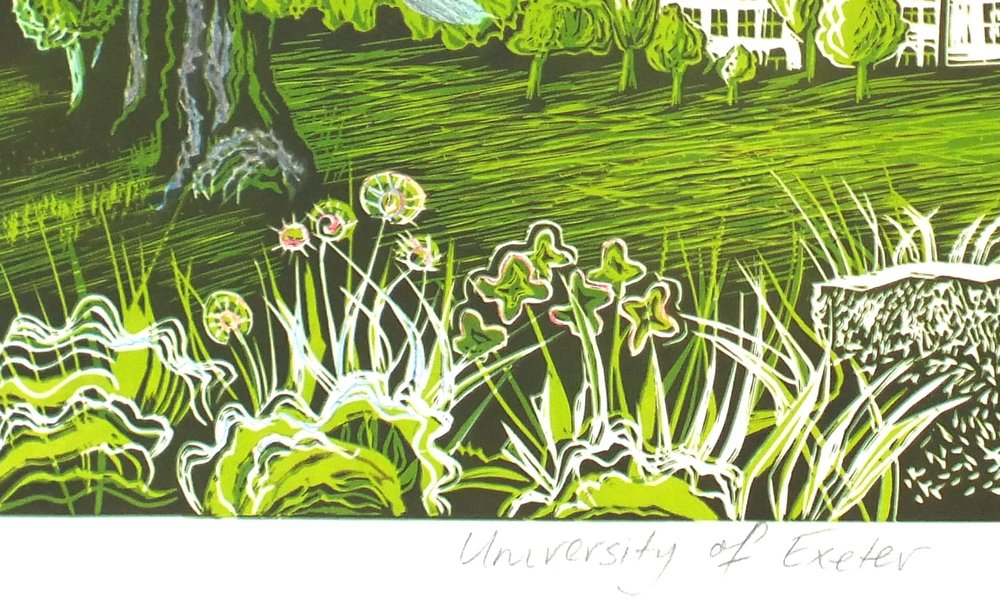 Uni of Exeter flowers.jpg