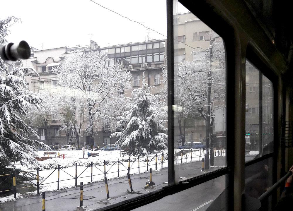 Tram window