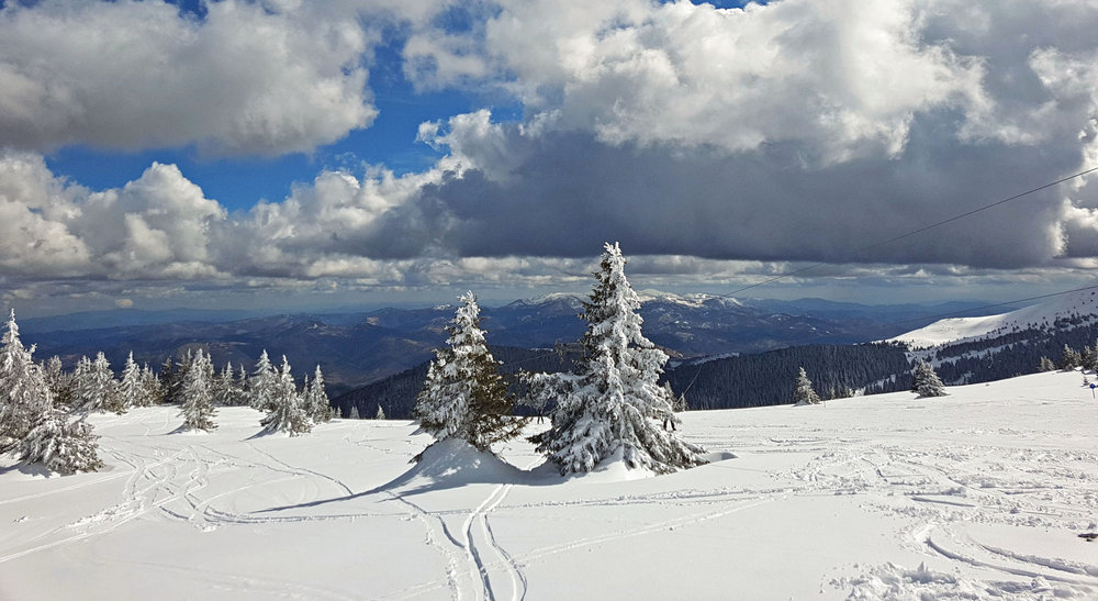 Kopaonik, a skier's paradise
