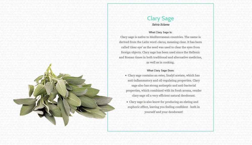 Essential Oil Benefits List Clary Sage