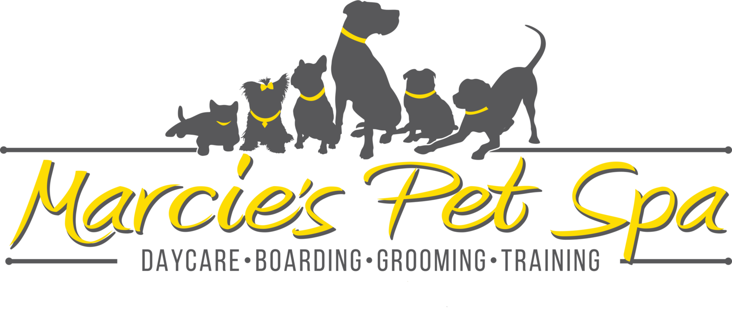 Marcie's Pet Spa