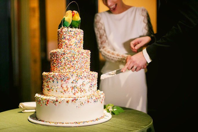 The Cake Lady -