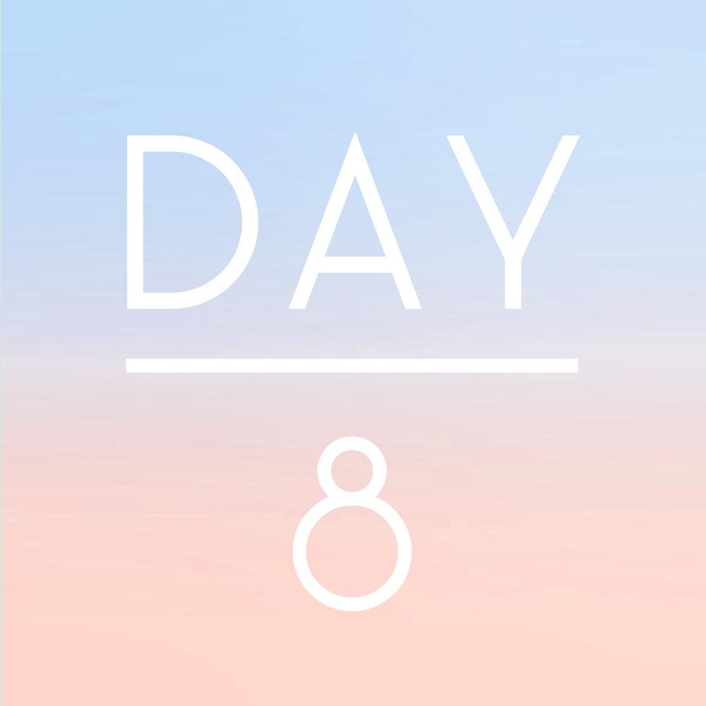 day8.jpg
