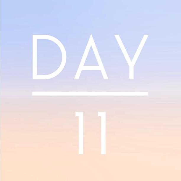 day11.jpg