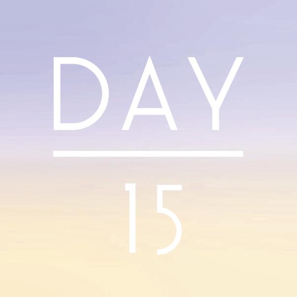 day15.jpg