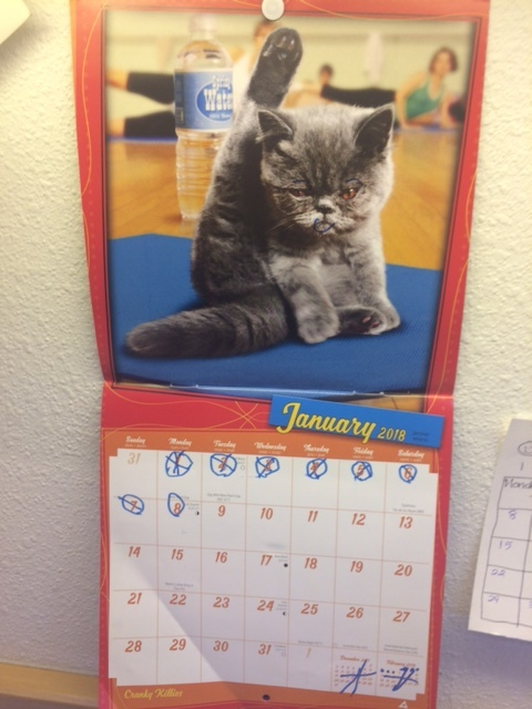 Learning days of the month with silly kitties