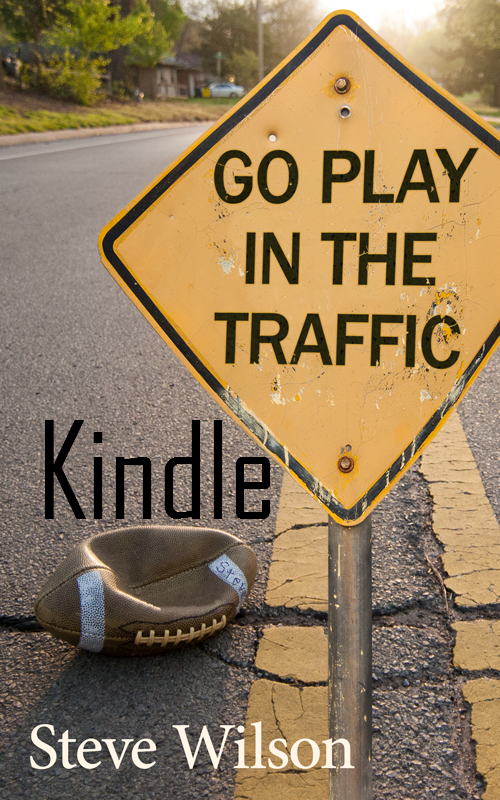 Go Play in the Traffic - Kindle