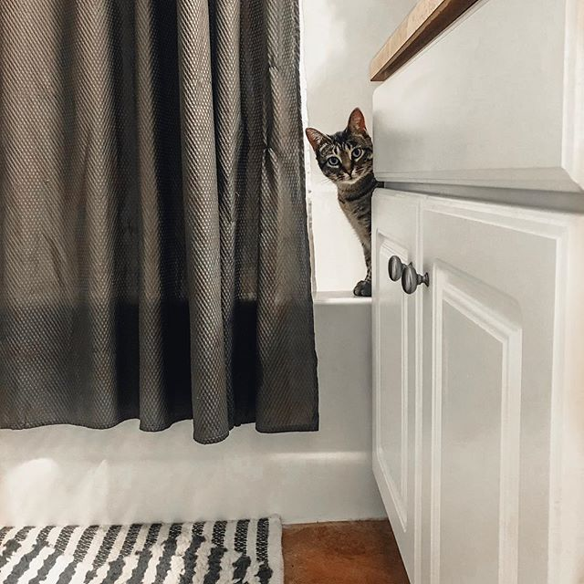 Can I help you?