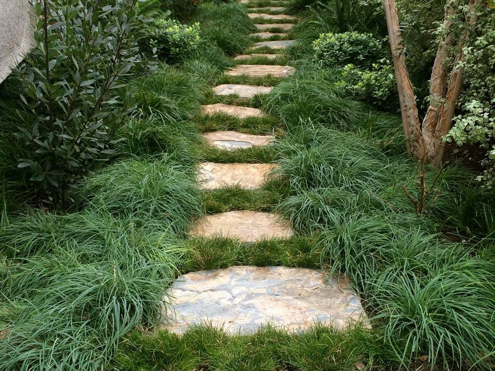 Entrada path.JPG