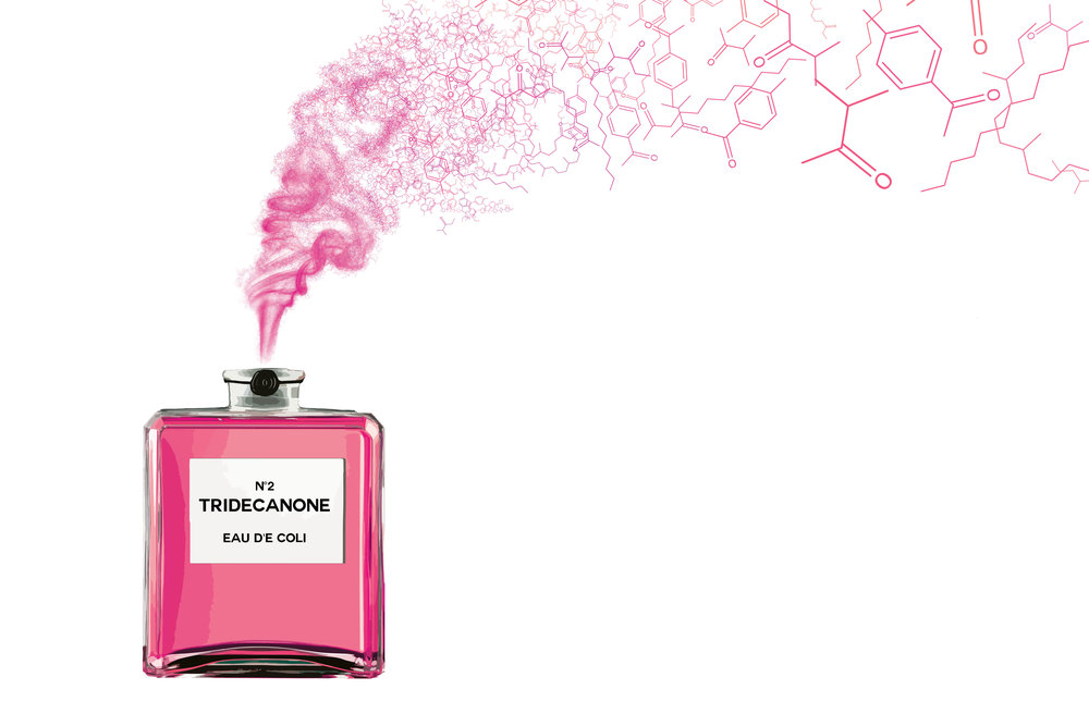 Most perfumes contain a lot of chemicals, some of which are potentially harmful.