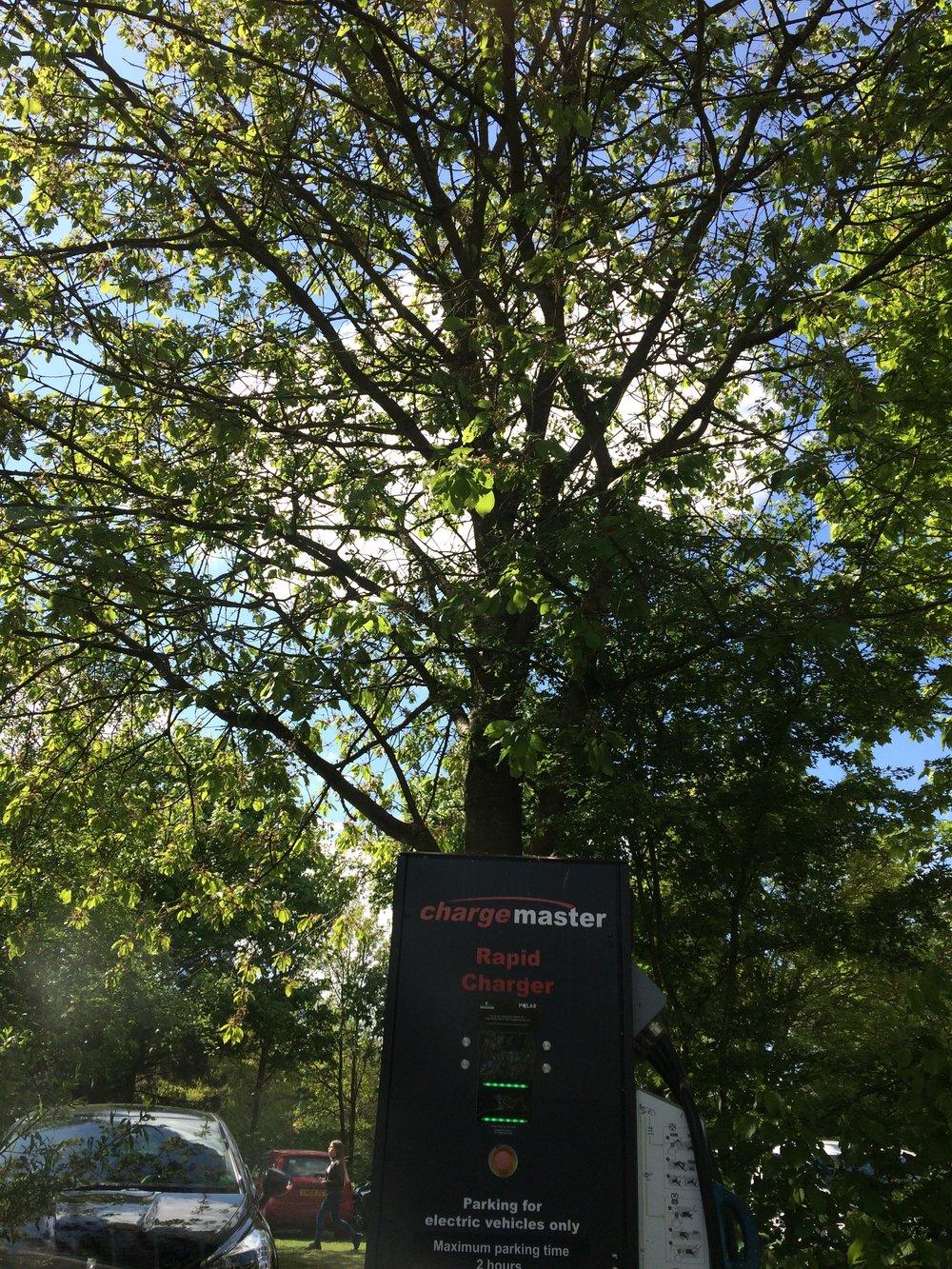Free parking at chargemaster point at Willen Lake, MK