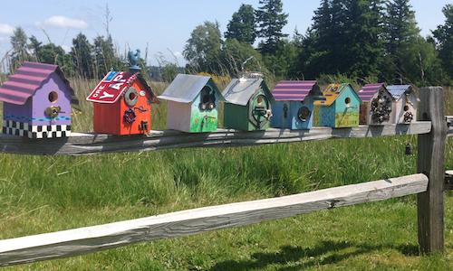 birdhouse-fence-resized.jpg