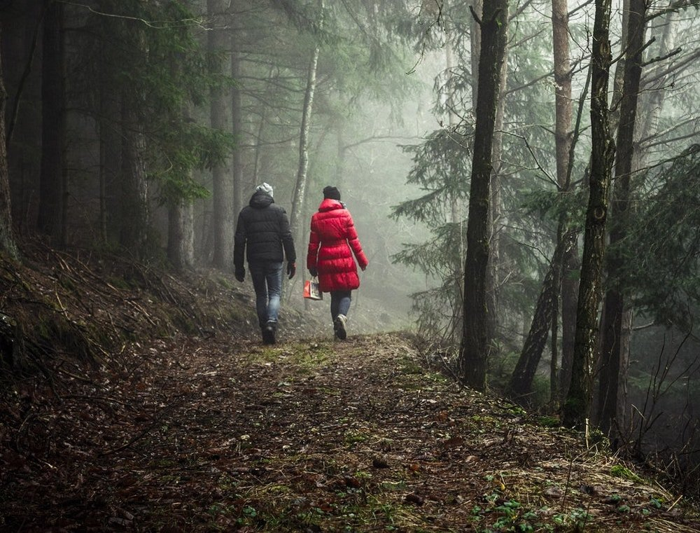 couple in woods.jpg