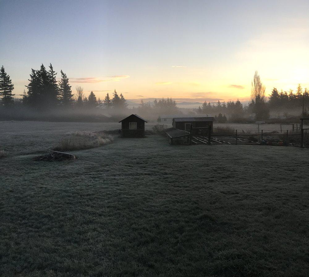 magical morning REC.jpg