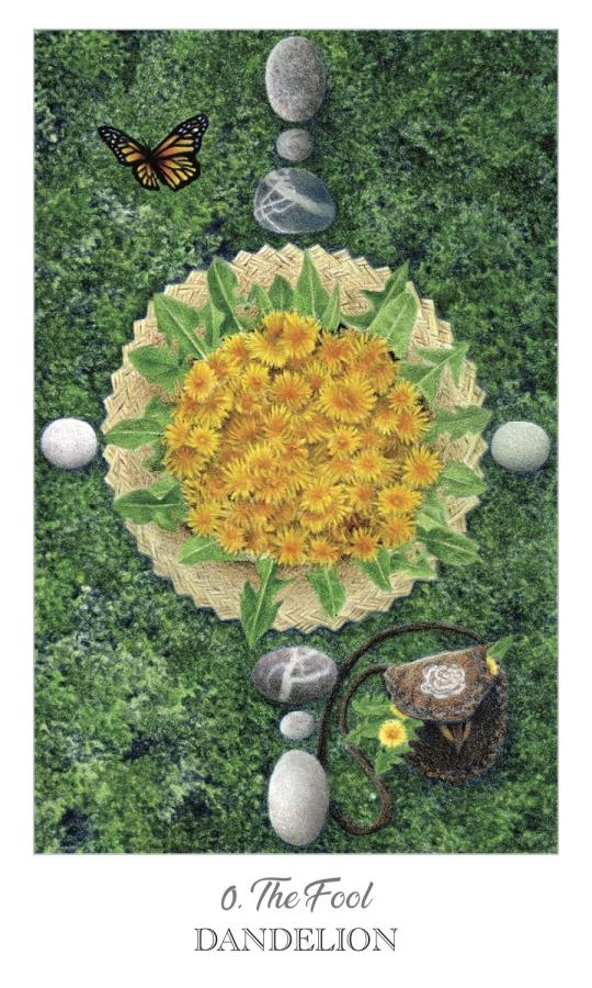 Optimized-dandelion tarot.jpg