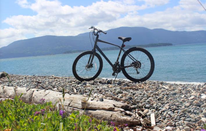 bike on beach.png