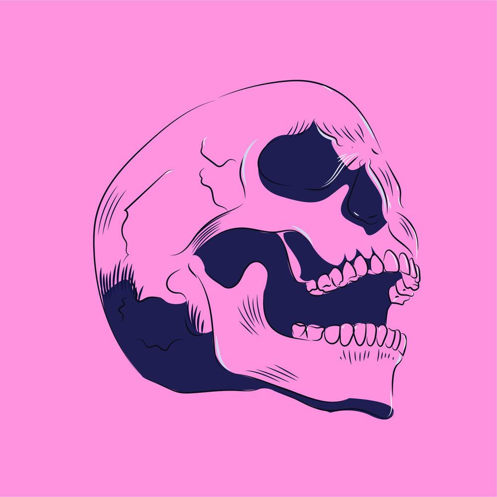 Amy Crow Skull