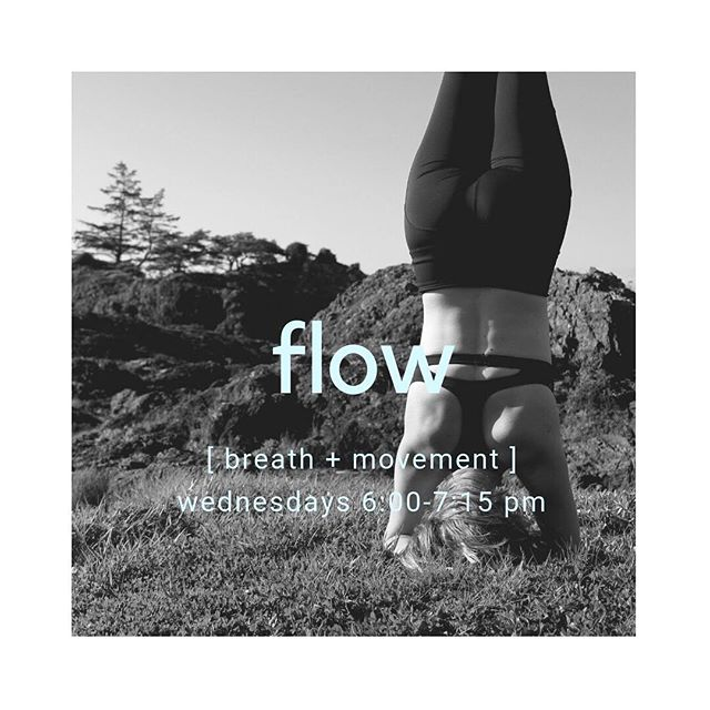 Foundations of Flow 〰️ Wednesdays 6:00-7:15 pm 〰️ @nourishwellnesscomox ⠀⠀⠀⠀⠀⠀⠀⠀⠀ Focusing on alignment and breath-led movement, this mild, vinyasa-styled flow will build strength and flexibility in the body, as well as peace and focus in the mind. By providing various modifications for poses and through the use of hands-on assists, this class is well suited to those new to yoga as well as those looking to deepen their existing practice. Drop-ins welcome. ⠀⠀⠀⠀⠀⠀⠀⠀⠀ $15/drop // $60/5 class pass ⠀⠀⠀⠀⠀⠀⠀⠀⠀⠀⠀⠀⠀⠀⠀⠀⠀⠀ #vinyasaflow #vinyasa #flow #yogaflow #breathledmovement #beginneryoga #yoga #yogateacher #yogalove #yogalive #yogalife #yogacommunity #yogahealth #onthemat #mindfulness #meditation #dailypractice #bodymindspirit #bodymindsoul #health #wellness #mindfulness #community #communityfirst