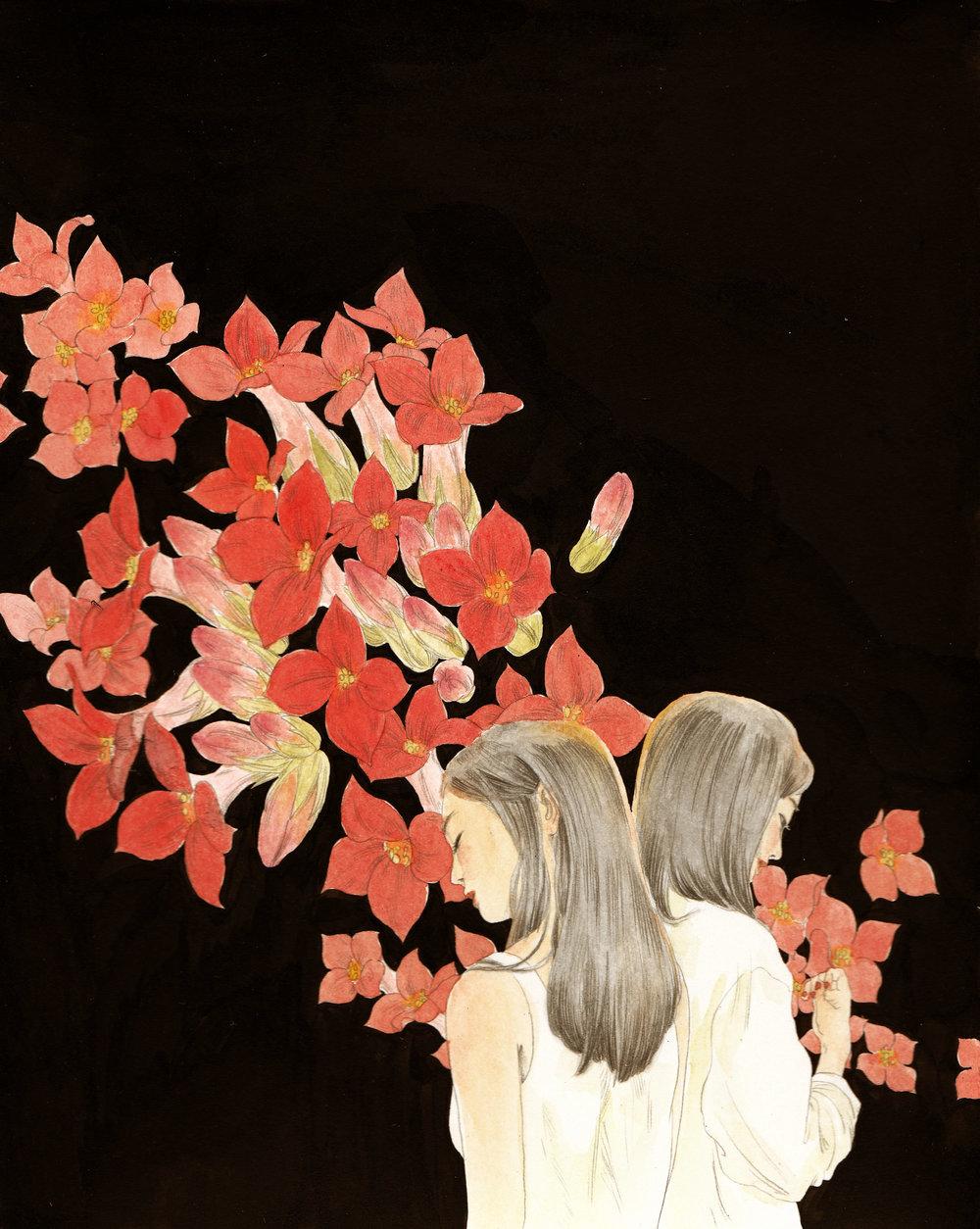 长寿花.jpg
