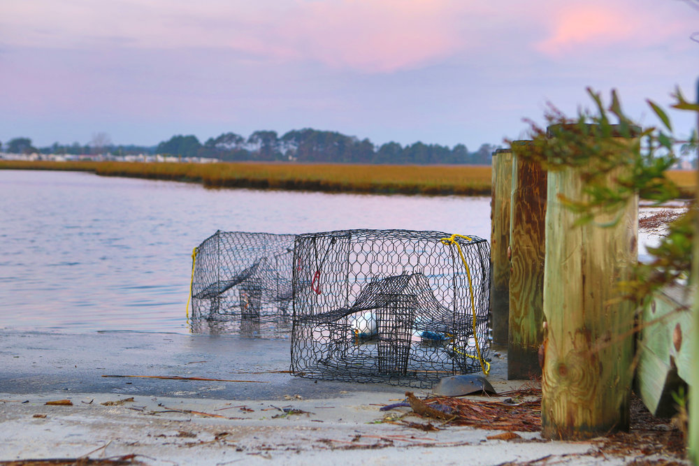 For The Waterman - Fishing & crabbing piers, bayside boat ramp, catch & release stocked lake, fishing pole rentals, paddle boats & more!
