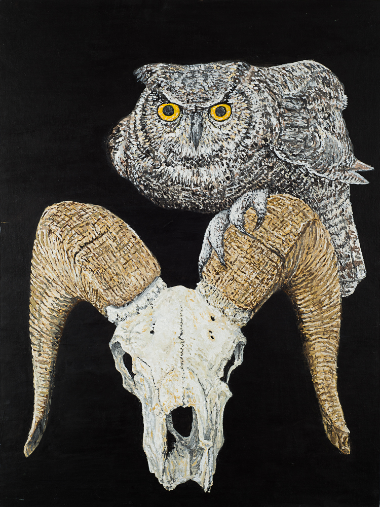 Great Horned Owl With Pronghorn Skull