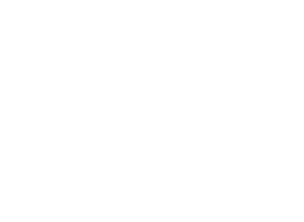 Sic Surface