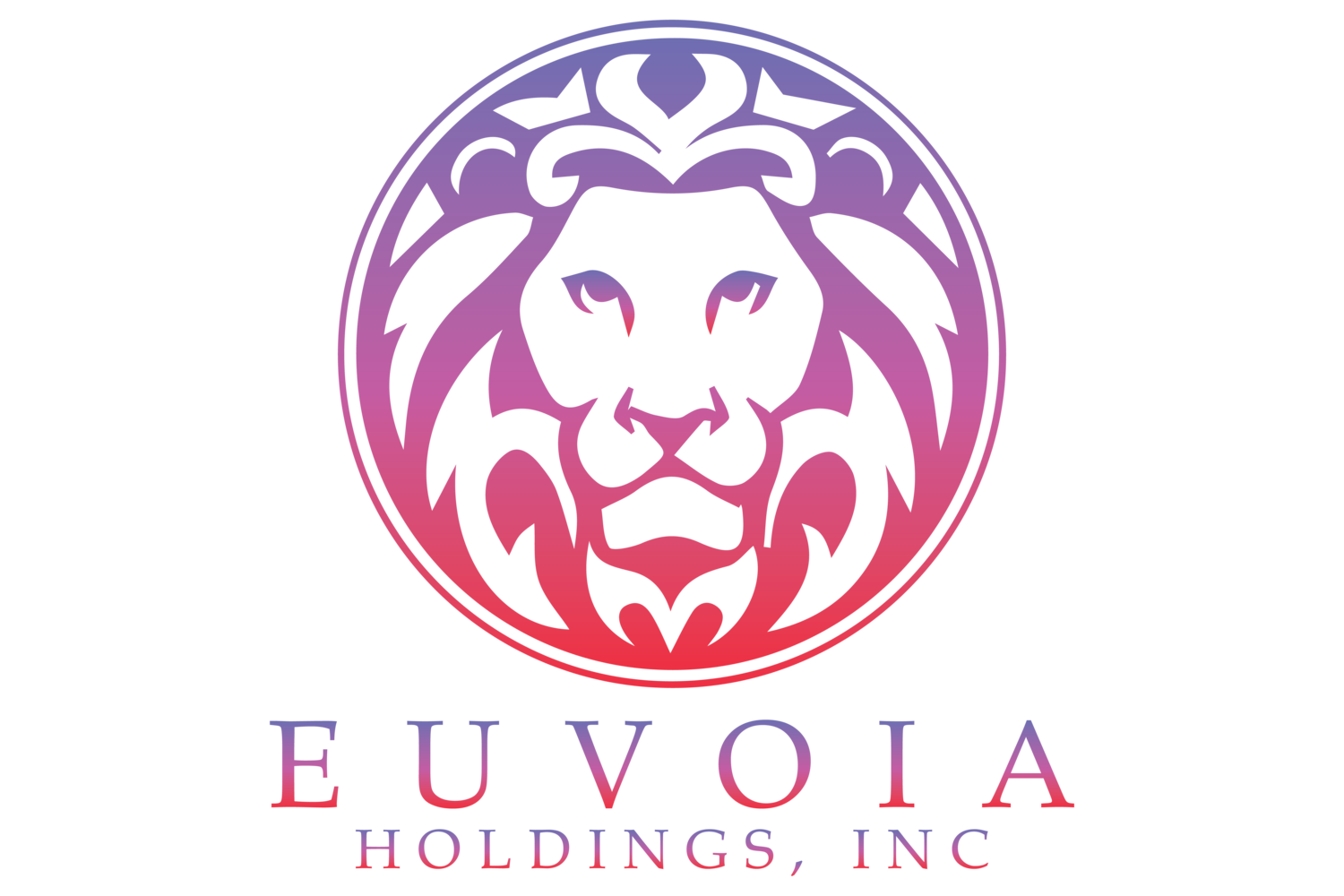 Euvoia Holdings Inc.