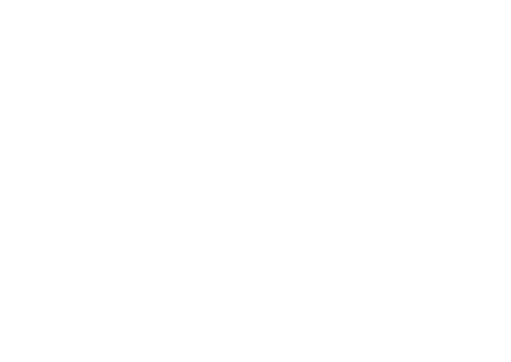 wild city logo - with url.png