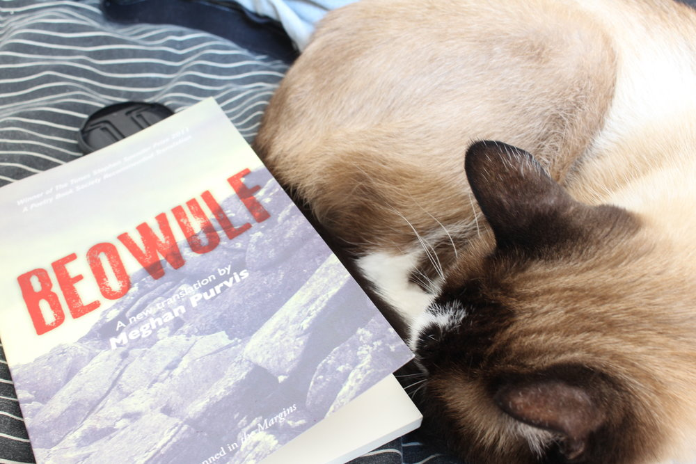 Two of my favorite things: Megan Purvis' Beowulf and my cat, Stanley.