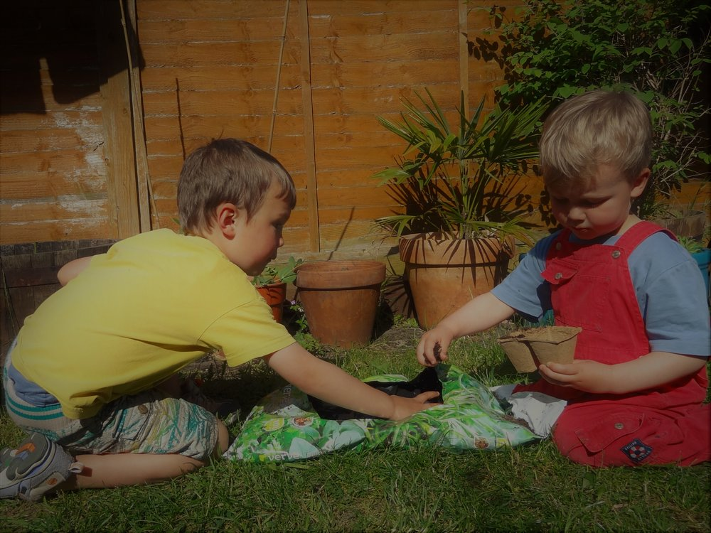 Filling biodegradable pots with seed compost