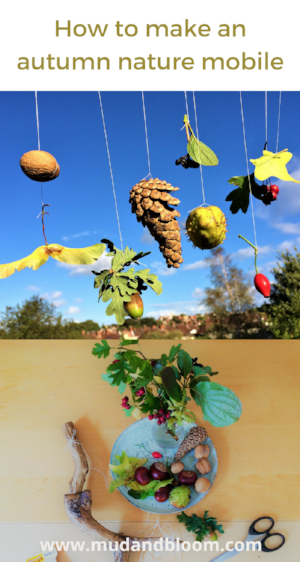 How to make a fall nature mobile