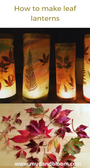 making leaf lanterns
