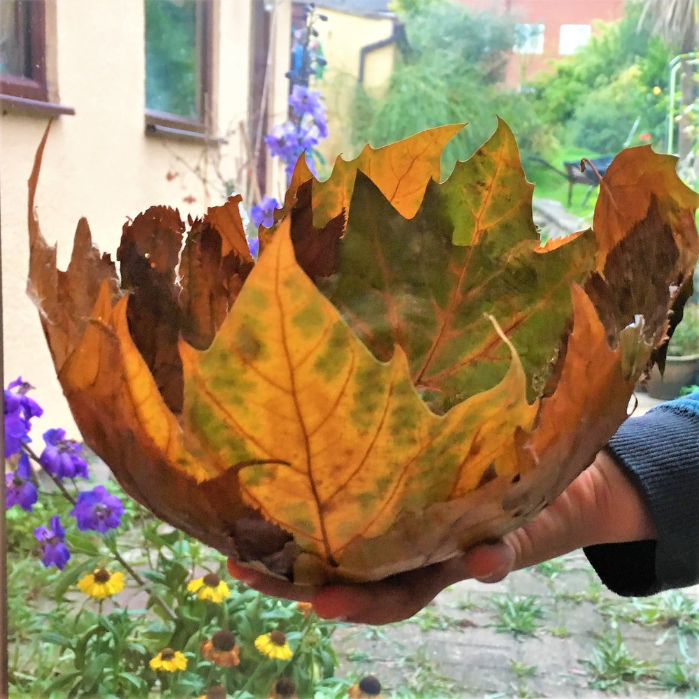 Finished leaf bowl