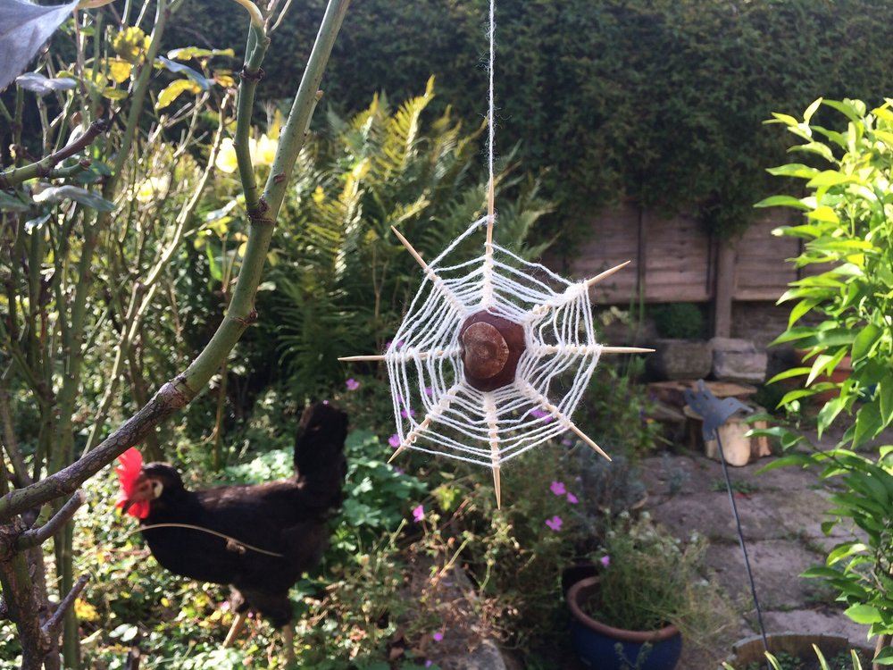 Making a conker spider web