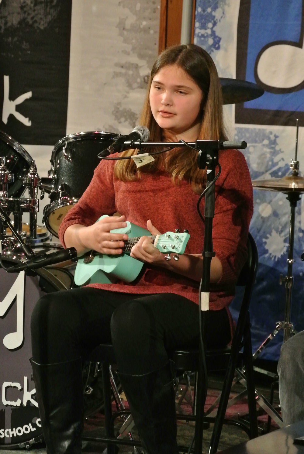 ukulele lessons Villanova pa in home main line