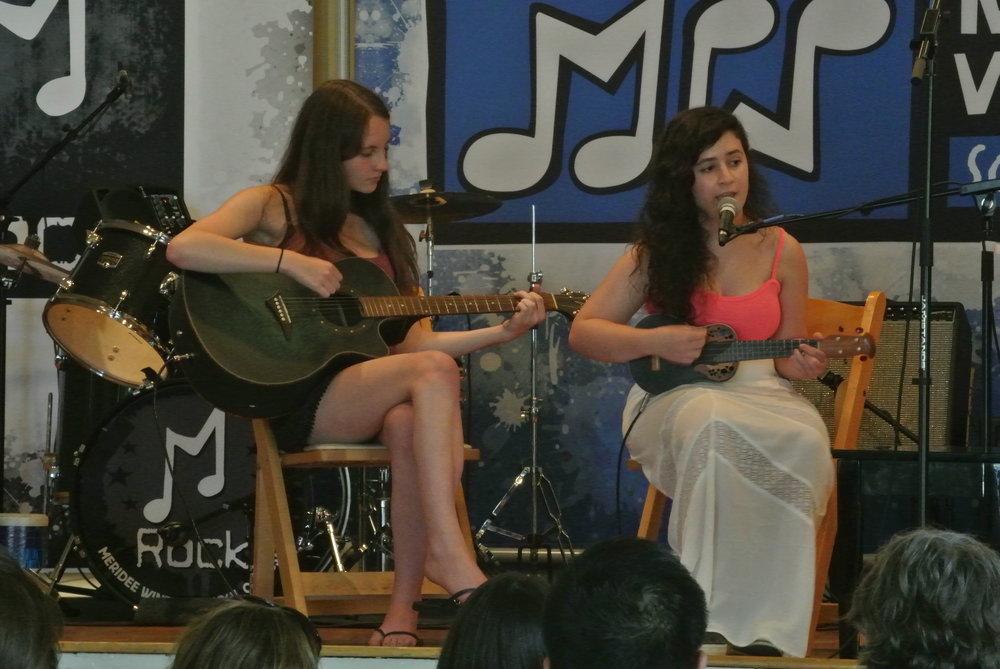 ukulele lessons Wayne pa in home main line