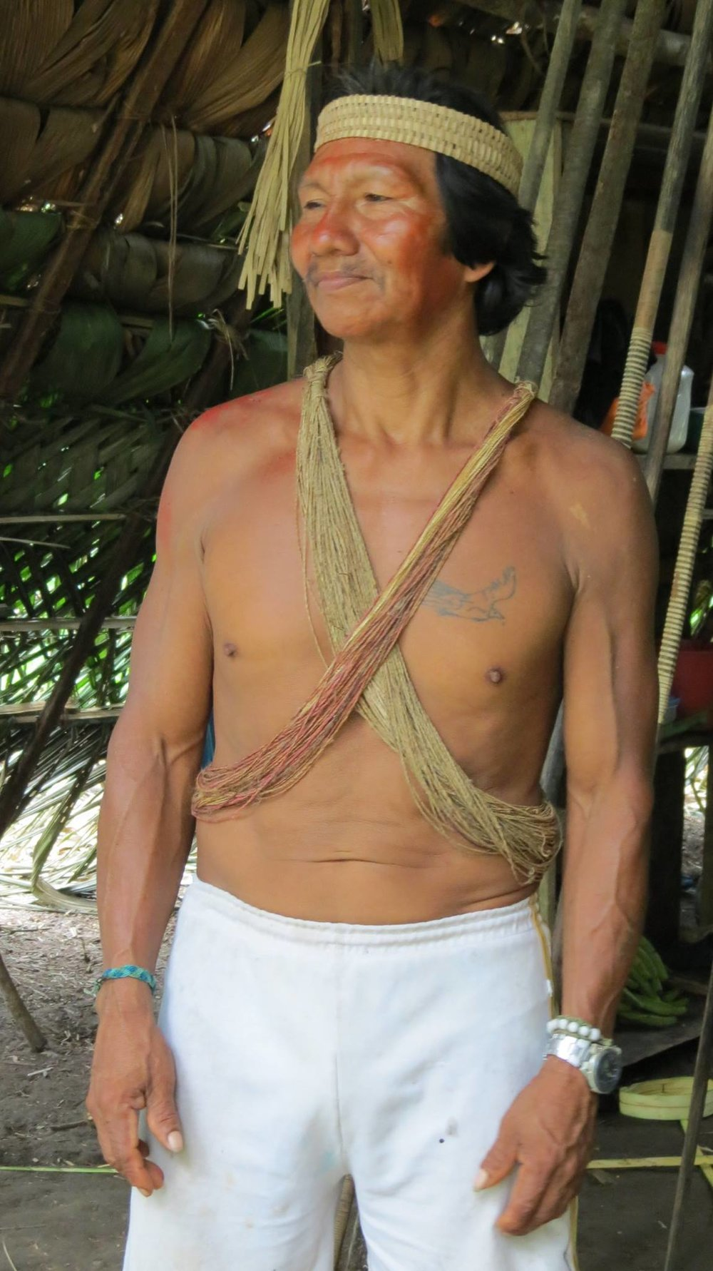 Huaorani leader Vai (pronounced 'Bai') is over 70 years old. He had more energy and muscle strength than a man 40 years his junior in modern society. Incredible!