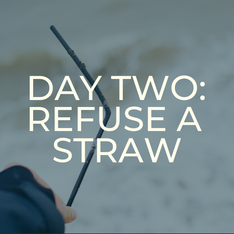 A Zero Waste Life. REFUSE A STRAW