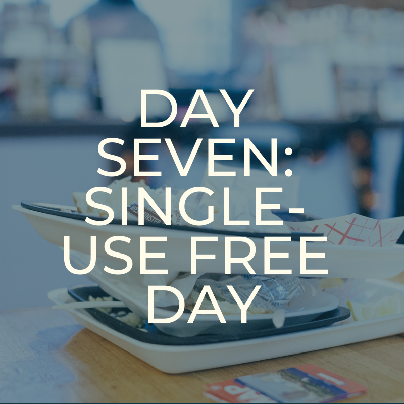 A Zero Waste Life. SINGLE USE FREE DAY