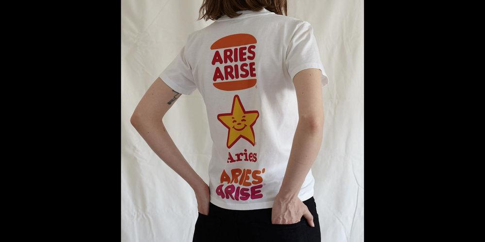 aries4.jpg