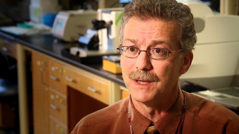 Joe Jerry, PhD  Scientific Director  PVLSI & Rays of Hope