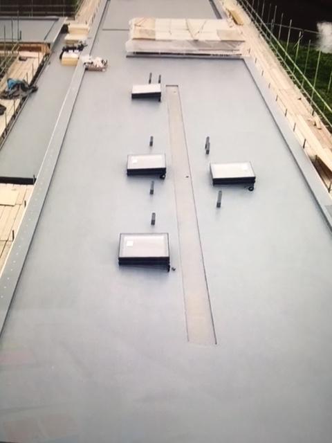 roof b.jpg