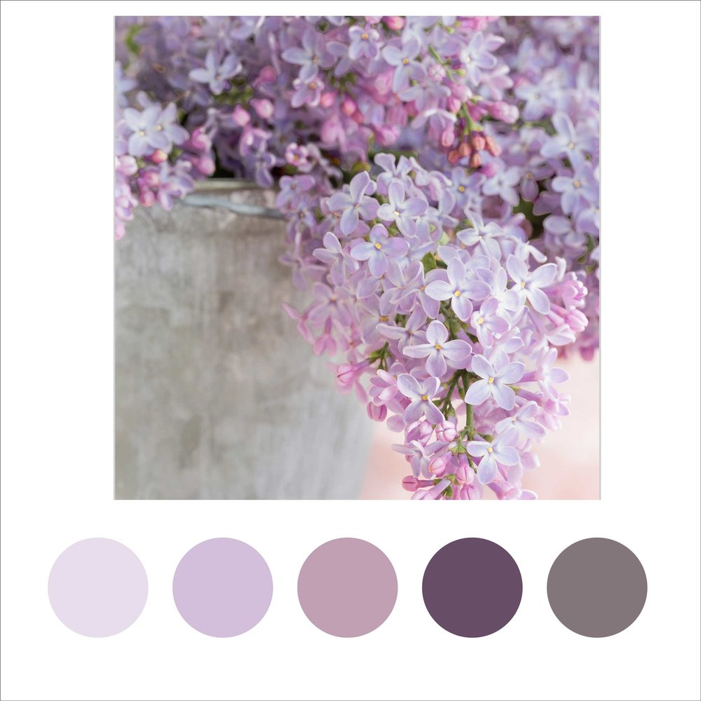 Lilac_Colour_Palette.jpg