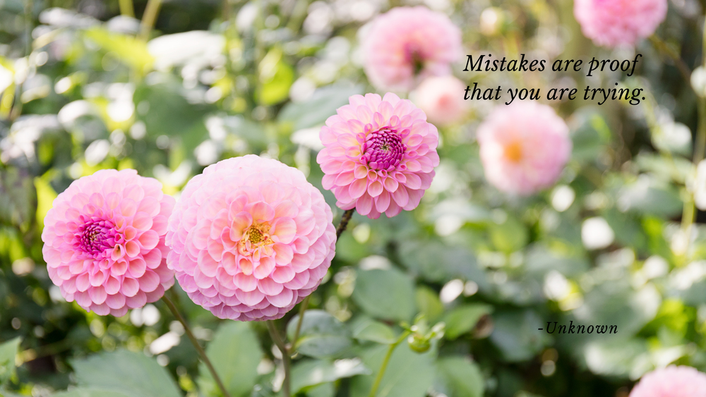 Dahlias_inspiraing_Quote_Screensaver.png