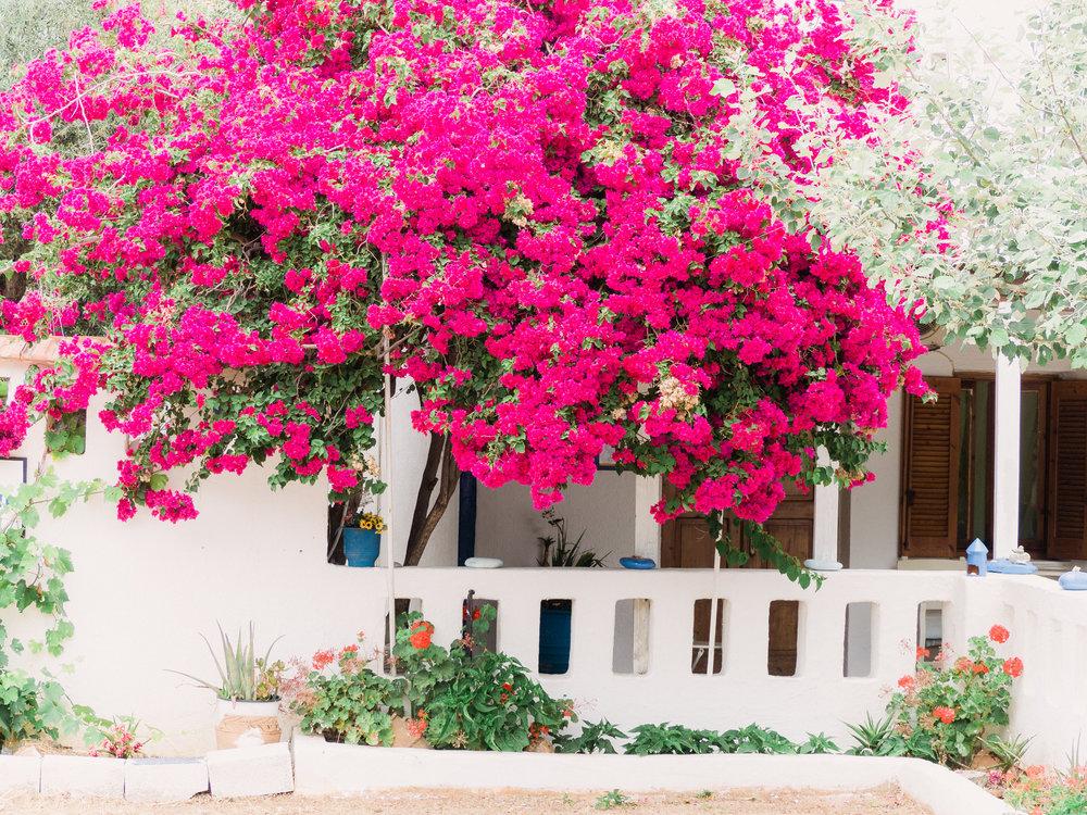 Crete-5200288.jpg