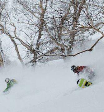 VALLÉE TACONIQUE   Ski/planche à neige hors piste guidé ou non