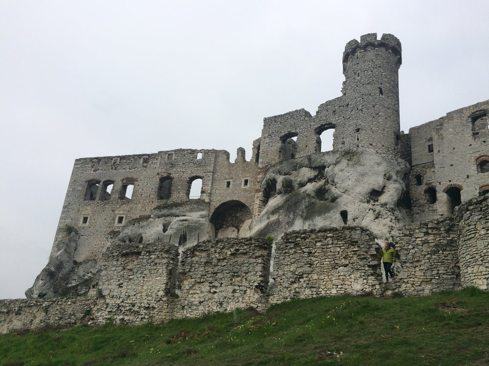 Castle in South West Poland.JPG