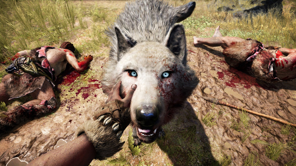 pet_wolf_gold_1080p_1449171017-0.jpg
