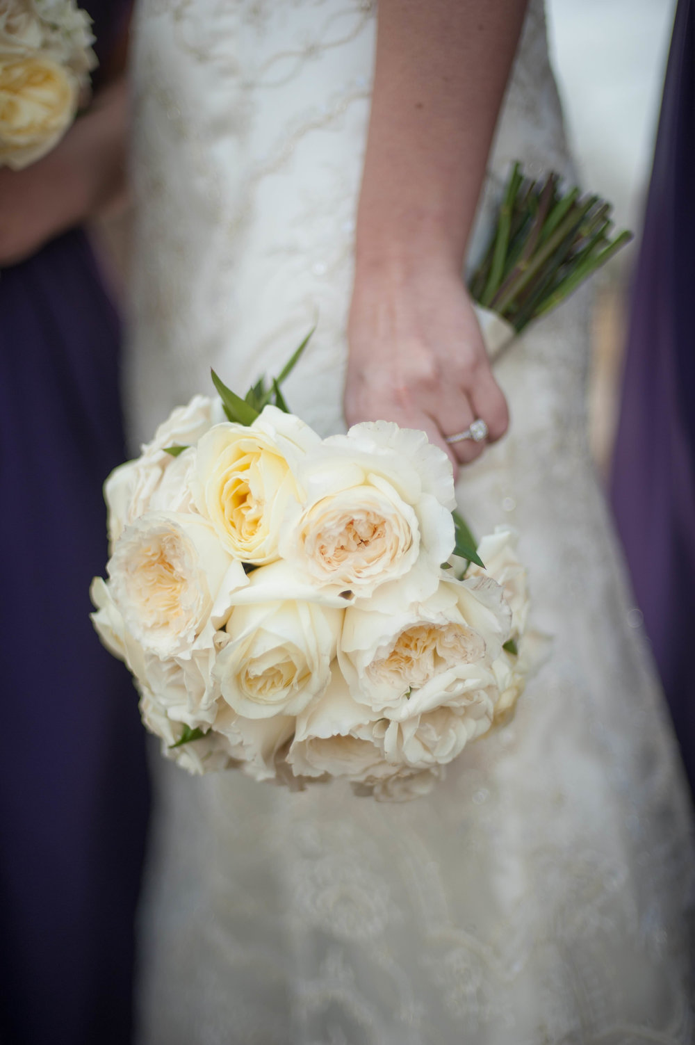 Amy-Mcmanus-Favorites-0018 (1).jpg